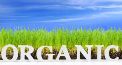 Green-Earth-Pest-Control-Melbourne-Florida-Organic-Lawn Care Organic fertiizers