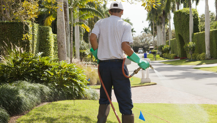 Green-Earth-Pest-Control-Melbourne-Florida-lawn-maintenance-guide