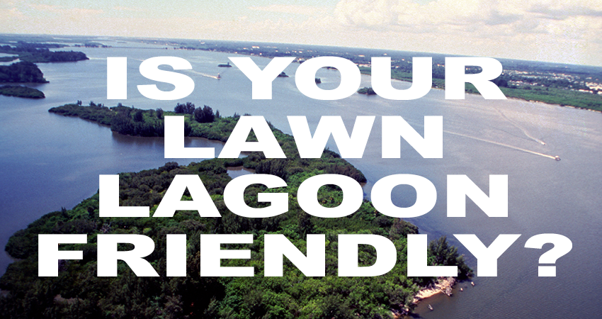 Is Your Lawn Lagoon Friendly? Ask Us How.